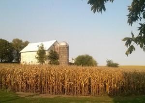 Iowa Row Crops