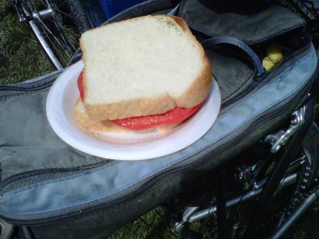 Fresh Tomato Sandwich