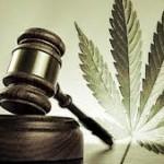 Reflections On The Recreational Aspects Of Marijuana