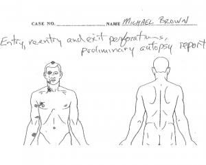 Michael Brown private autopsy
