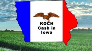 koch-cash-in-iowa