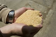 Soybean_Meal.jpg