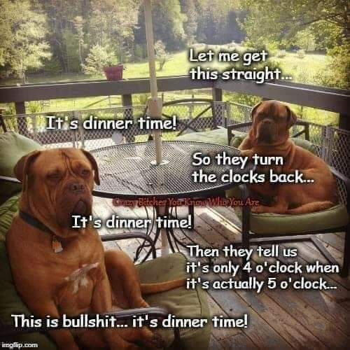 dogs discuss time change