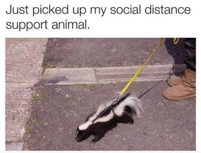 social distance support animal AHNC