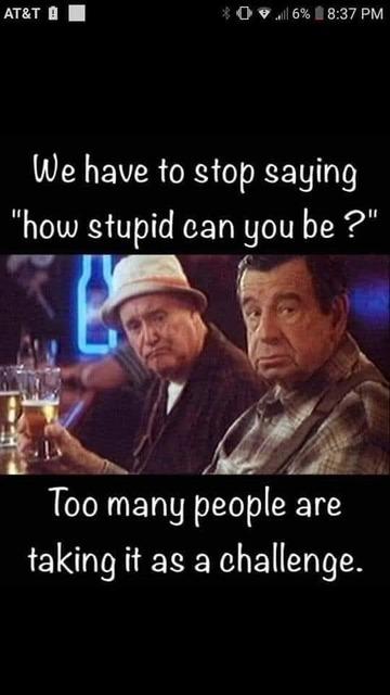 stupid DU